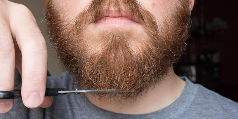 crestere barba-tuns